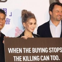 WildAid and model Hannah Quinlivan urge the public to not eat shark fins