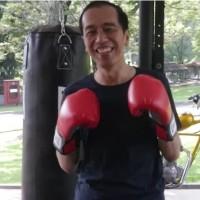 化身拳擊手 印尼總統挑戰自我
