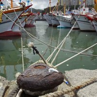 Mini-doc examines abuseof migrant workers on Taiwanese fishing boats