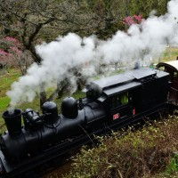 Taiwan's Alishan Railway honored at Japan's annual railway awards