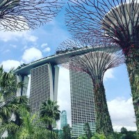 新加坡五度成全球生活花費最貴城市