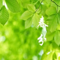Taiwanese TCM health tips for Chunfen- spring equinox
