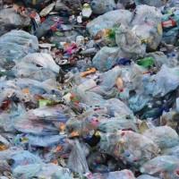 美英研究團隊新發現 食用塑料酶可望解決海洋垃圾