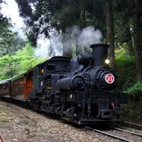 Newly founded civic organization pushes for Alishan to be included in World Heritage List