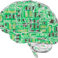 學者:演算法恐加劇社會問題