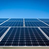 墨西哥清潔能源 230萬朵「太陽花」追日