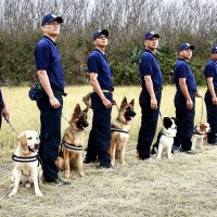Cuteness of Taiwan K-9 unit put to a vote