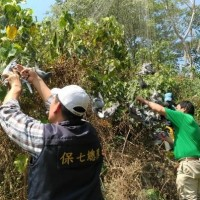 Taiwan police discover illegal bird trapping net