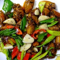 Thai workers savor stir-fried lychee stink bugs in western Taiwan