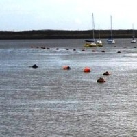 Mooring buoys to help protect Xiaoliuqiucoral reefs