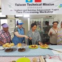 助友邦帛琉重拾芋頭主食 國合會派食品加工專家當地開課