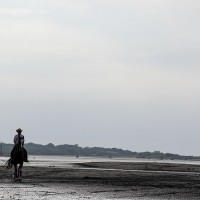 Photo of the Day: Horseriding in Taipei's Bali District