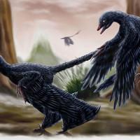 恐龍也有皮屑 這和演化有何關連呢?