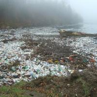 聯合國:拒絕使用不能重覆使用的物品