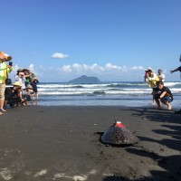 獲救岱瑁「魷魚絲」游抵菲國海域 林務局籲守護海洋生態
