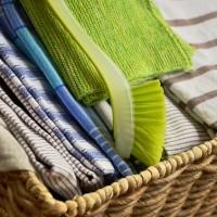 茶巾若使用不當 恐成細菌的溫床