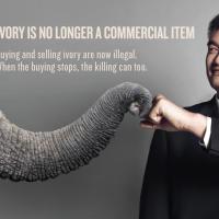 WildAid與寮國廣告商合作 籲中國遊客停購野生動物製產品
