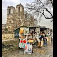 巴黎塞納河畔二手書攤 力爭文化遺產殊榮