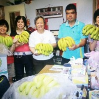 Taipei borough offices buy more than 5,000 cartons of bananas to help distressed farmers