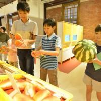 台博館邀兒童《來SAY菜市場》 用科技烹煮天菜