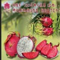 義美將收購250公噸火龍果 樂見更多企業協助台灣農民