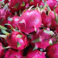 Taiwan's I-Mei to buy 250 tons of red pitaya amid glut