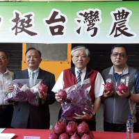 Taiwan's I-Mei to reveal 15 creative dragon fruit recipes online to help farmers
