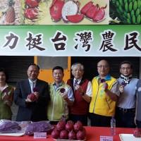支持台灣農民!義美收購火龍果入庫、創意入菜發表