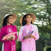 赴越南遊客增 半年達33萬多人次