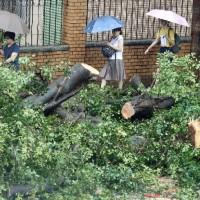 颱風「瑪莉亞」遠離 全台已知8人輕傷