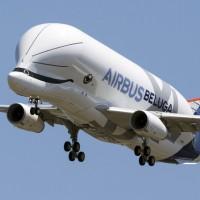 不只海裡游還天上飛  空巴「超大白鯨」法國首飛成功!