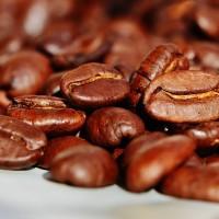 台科大攜手新南向國家 「酷點校園」咖啡產學合作