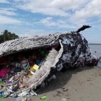 圖為綠色和平組織在菲律賓一海灘上放置的巨型裝置藝術,藉此提醒世人塑膠垃圾正不斷在吞噬海洋生命。