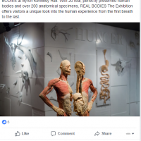 習近平把死囚屍體偷偷賣出國展覽?