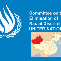 UN panel concerned over Chinese detention of Uyghurs