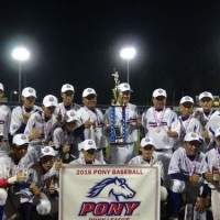 Team Taiwan wins PONY League championship in 13-14 year old division