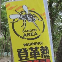 More indigenous dengue fever cases reported in Central Taiwan
