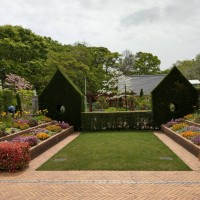 Taiwan to implement first 'therapeutic garden' in Taipei next year