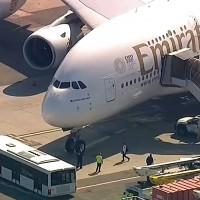 阿聯酋飛紐約班機百人不適 10人情況嚴重送醫