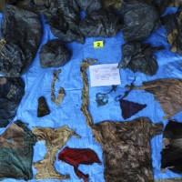 墨西哥發現百具屍體 毒梟下的手?