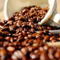 美FDA:咖啡致癌警語恐誤導 籲加州政府停止戰爭