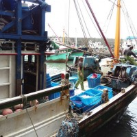 Taiwan seeks removal from EU illegal fishing watch list with tighter regulation
