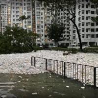 「山竹」颱風襲香港 海洋垃圾重返陸地