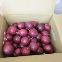 蔬果農藥抽驗13件不合格 北農百香果、芥藍菜上榜