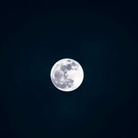 月玩越有趣!高市社會局攜手高大辦台越中秋節邀新住民同樂