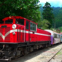 跨越一世紀的鐵道情 阿里山小火車躍上國際媒體