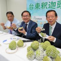 台灣釋迦首次銷往日本 預計每年賣100噸
