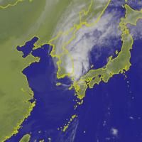 康芮颱風肆虐濟州 昨日降下310毫米雨量