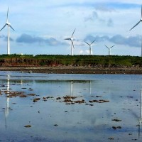 File photo: wind farm