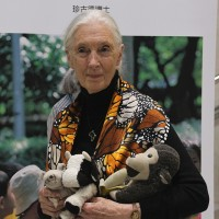 Jane Goodall's message to Taiwan: There are reasons for hope